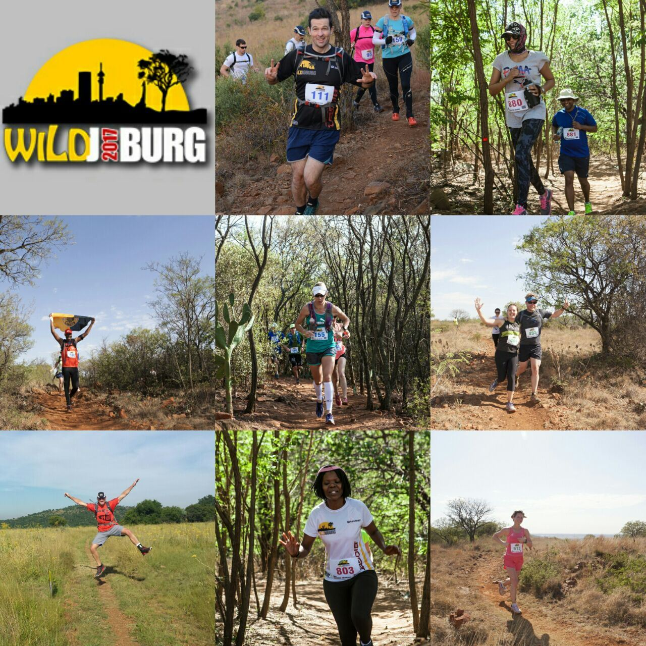 Wildjoburg Collage