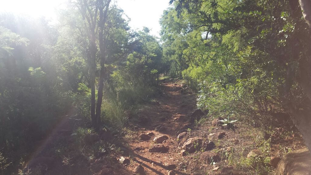 Highveld trails