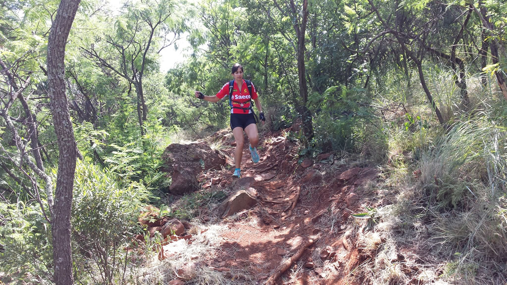 wildjoborg-trails-2