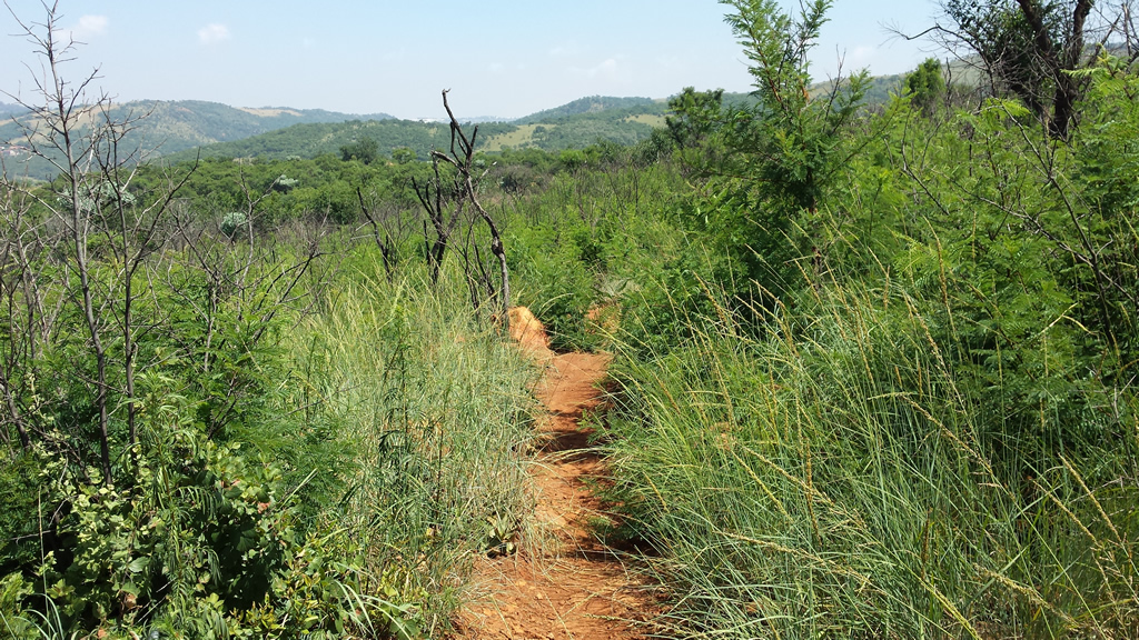 wildjoborg-trails-3